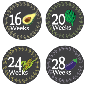 mommy-bell-sticker-16-weeks-28-weeks